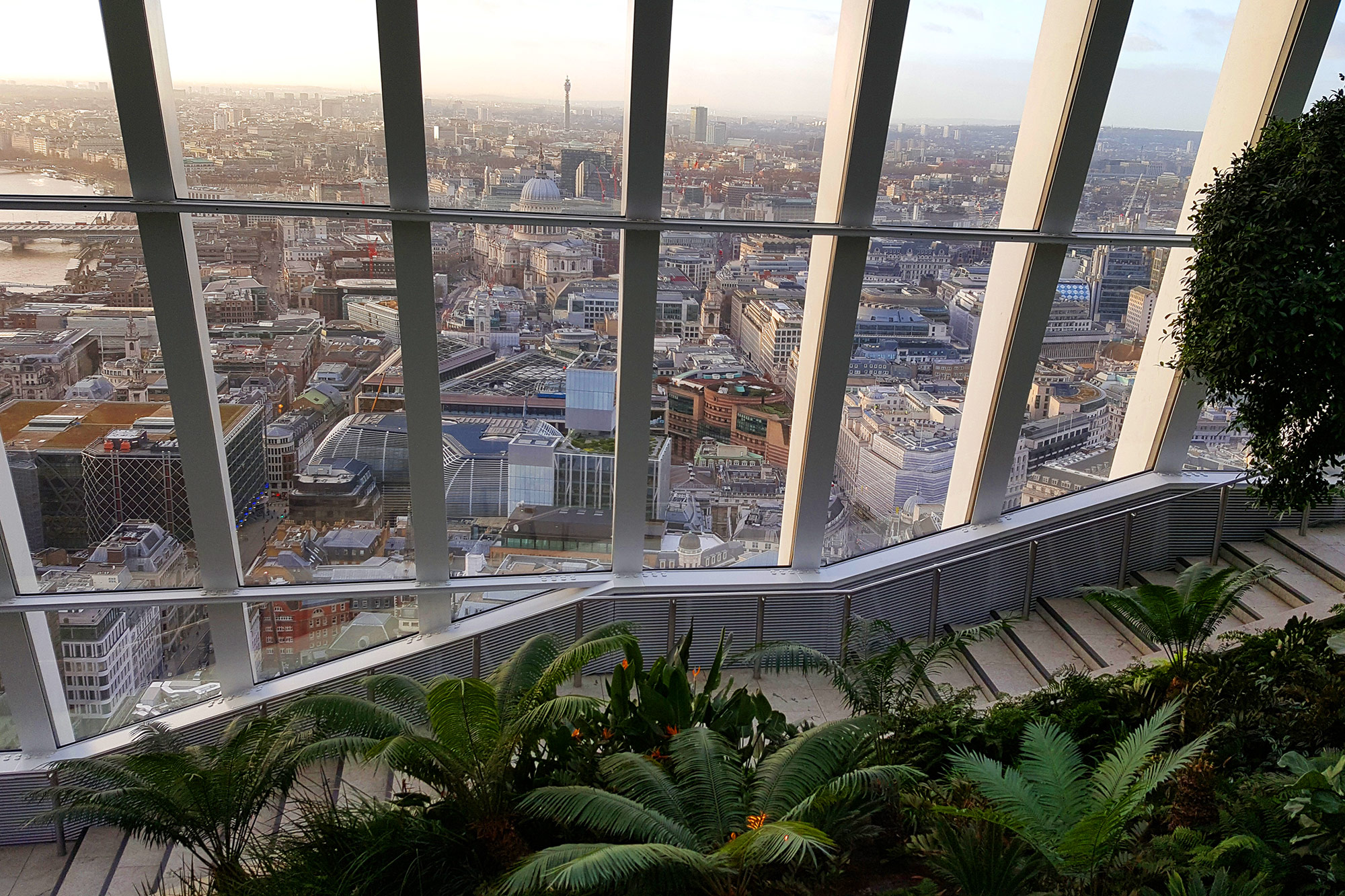 Sky Garden plants and view across St Paul's Cathedral London